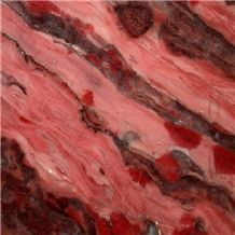 Stromatolite Calcarenite