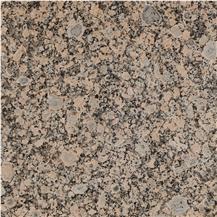 Texas Flower Granite