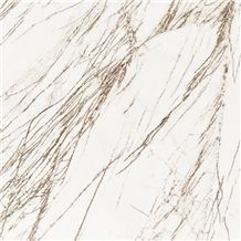 Thassos Golden Raddix Marble