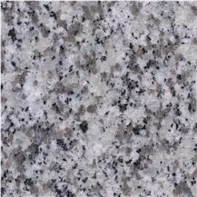 Tiangang White Granite