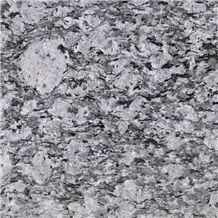 Tiger White Granite
