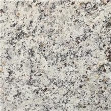White Arabesco Granite