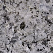 White Champagne Granite