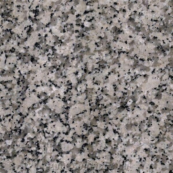 White Pearl Granite - Saudi Arabia - StoneContact com