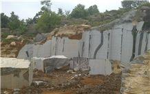/picture201511/Quarry/201605/122187/black-wood-vein-marble-quarry-quarry1-4233B.JPG