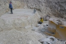 /quarries-5637/philippines-brown-coral-stone-quarry