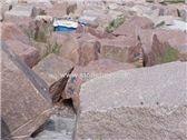 /picture201511/Quarry/20183/56551/maple-red-granite-quarry-quarry1-5227B.JPG