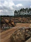 /picture201511/Quarry/20185/148046/china-zhangpu-grey-basalt-quarry-quarry1-5346B.JPG
