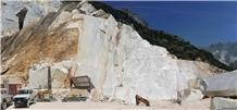 /picture201511/Quarry/201910/163547/cava-di-sponda-calacatta-sponda-calacatta-carrara-bianco-venatino-statuario-venato-marble-quarry-quarry1-6595B.JPG