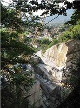 /picture201511/Quarry/20192/156271/beola-argentea-favalle-gneiss-quarry-quarry1-6108B.JPG