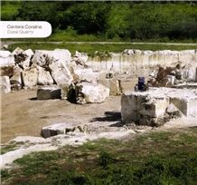 /quarries-6435/boca-chica-coral-stone-coralina-beige-coral-stone-quarry