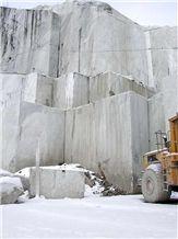 /picture201511/Quarry/20197/17935/bianco-statuario-marble-statuario-carrara-marble-quarry-quarry1-6445B.JPG