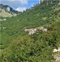 /picture201511/Quarry/20204/169180/breccia-deja-marble-quarry-quarry1-6960B.JPG