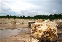 /quarries-4455/calypso-coral-classic-coral-stone-golden-coral-stone-quarry