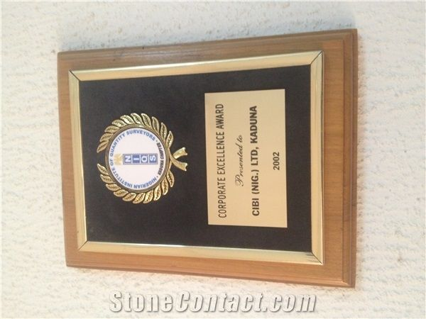 CORPORATE EXCELLENCE AWARD